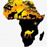 Африканский континент дарит скидки!!!