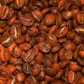 Кофе Перу Chachapoyas SHG GR1 Washed (арабика)